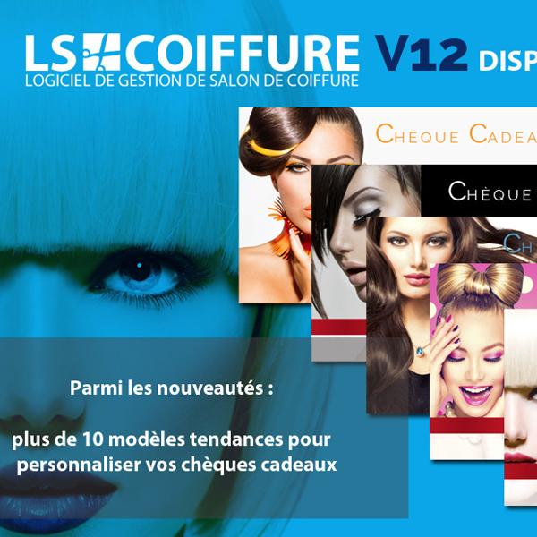 Lscoiffure logiciel de caisse et logiciel de gestion de for Logiciel pour salon de coiffure